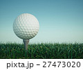 Golf ball with tee in the grass on sky background 27473020