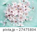 桜の花 27475804