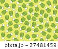 かぶ 蕪 水彩画 柄 パターン 27481459
