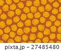 たまねぎ パターン 柄 水彩画 27485480