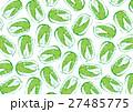 白菜 ハクサイ 水彩画 27485775