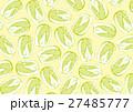 白菜 ハクサイ パターン 水彩画 27485777