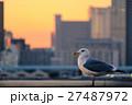 東京夕景・晴海 (91) 27487972