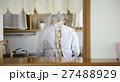 一人暮らし 高齢者 料理をする女性 27488929