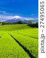 富士山 新緑 茶畑の写真 27495065