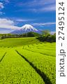 富士山 新緑 茶畑の写真 27495124