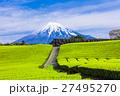 茶畑と富士山 27495270