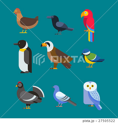 Birds vector set illustration isolated 27505522