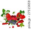 Berries Set Vector Illustration. Strawberry 27515659