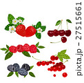 Berries Set Vector Illustration. Strawberry 27515661