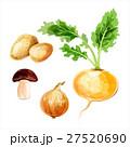 ジャガイモ 玉葱 きのこのイラスト 27520690