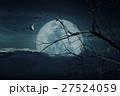 月 森林 林の写真 27524059