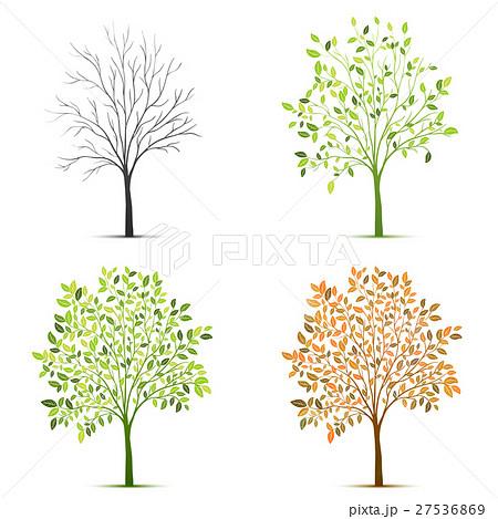 Four seasons of tree vectorのイラスト素材 [27536869] - PIXTA