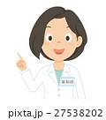 薬剤師 女性 説明のイラスト 27538202