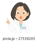 薬剤師 女性 説明のイラスト 27538205
