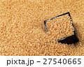 玄米 米 コシヒカリの写真 27540665