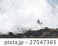 波とゆりかもめ 27547365