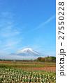 富士山 山 花の写真 27550228