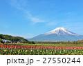富士山 山 花の写真 27550244
