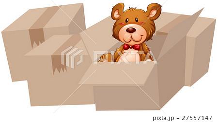 Teddy bear in the cardboard box 27557147