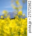 岩手山と菜の花 27572962