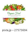 ベジタブル 野菜 ベクトルのイラスト 27573694