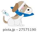 動物病院で治療中のペット 27575190