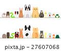 ペットのボーダーのセット 正面と後ろ姿 カラー 27607068