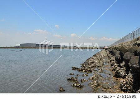 遠浅の海・テトラポッド(多摩川河口/東京都大田区) 27611899