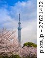 東京スカイツリーと墨田公園の桜 27621422