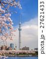 東京スカイツリー 墨田公園 桜の写真 27621433