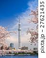 東京スカイツリーと墨田公園の桜 27621435