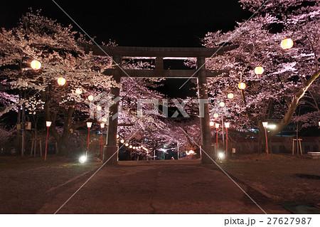 夜桜ライトアップ(鬼怒川温泉神社) 27627987