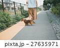 犬 ペット ミニチュアダックスの写真 27635971