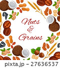 Nuts, grain and seeds vector poster 27636537