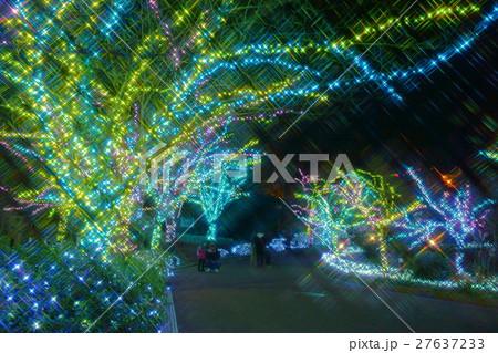 ひらかたパーク夜景 27637233