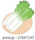 大根 <お野菜とざる> 27667197