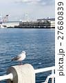 【神奈川県】カモメ 27680839