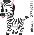 illustration of cute zebra cartoon 27719824