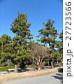 稲毛海岸入り口の黒松の街路樹 27723566