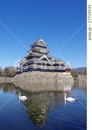 信州 国宝 松本城と内堀を泳ぐ白鳥(二羽)縦 松本観光の中心 現存12天守のひとつ 27729535