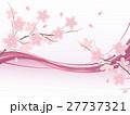 桜 花 花びらのイラスト 27737321