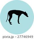 greyhound 27746949
