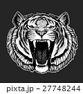 Vector tiger for tattoo, sport logo, t-shirt 27748244