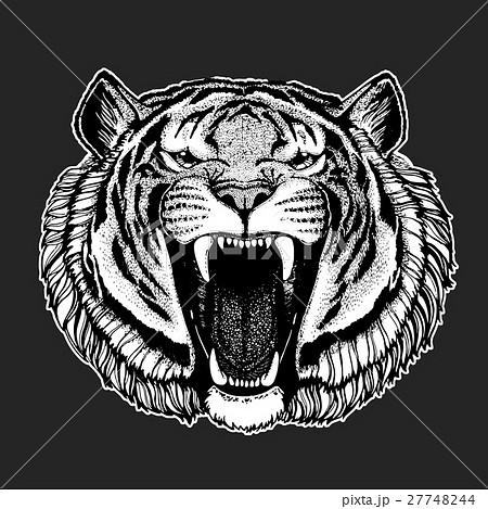 Vector tiger for tattoo, sport logo, t-shirt 27748244