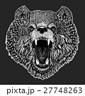 Wild bear Vector image for tattoo, t-shirt 27748263