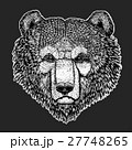 Wild bear Vector image for tattoo, t-shirt 27748265