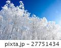 青空と樹氷 27751434