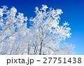青空と樹氷 27751438