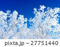 青空と樹氷 27751440